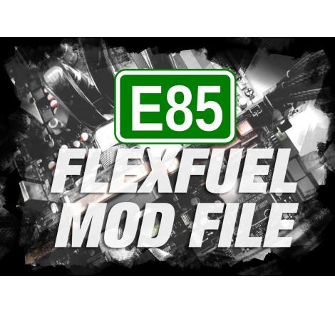 STAGE 1 + FLEXFUEL BIO...